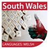 Cover image of Vocabulary for Welsh Learners: Entry Level