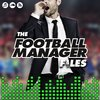Cover image of Football Manager Files