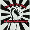 Cover image of You Say You Want A Revolutionary