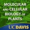 Cover image of Molecular and Cellular Biology of Plants, Spring 2008