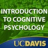 Cover image of PSC100 - Introduction to Cognitive Psychology