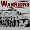 Cover image of Warriors In Their Own Words | First Person War Stories