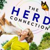 Cover image of The Herd Connection