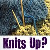 Cover image of Knits Up?