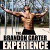 Cover image of The Brandon Carter Experience