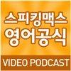 Cover image of 스피킹맥스 영어공식 (Video)