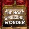 Cover image of THE MOST WONDERFUL WONDER
