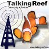 Cover image of Talkingreef