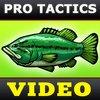 Cover image of Bass Fishing Tactics Videos [BassFishin.Com]