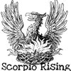 Cover image of The Scorpio Rising Podcast