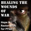 Cover image of Healing the Wounds of War: Hope and Restoration for PTSD