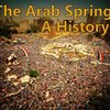 Cover image of Arab Spring: A History