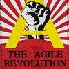 Cover image of The Agile Revolution