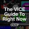 Cover image of The VICE Guide to Right Now