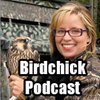 Cover image of Birdchick Podcast
