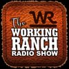 Cover image of The Working Ranch Radio Show