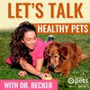 Cover image of Let's Talk Healthy Pets with Dr. Becker