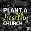 Cover image of How To Plant A Healthy Church