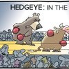 Cover image of Hedgeye: In The Arena